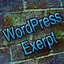 Wordpress exerpt